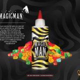 Magic Man by One Hit Wonder