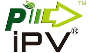 Pioneer4You iPV