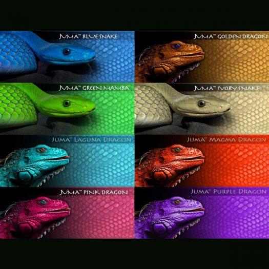 Juma Colors